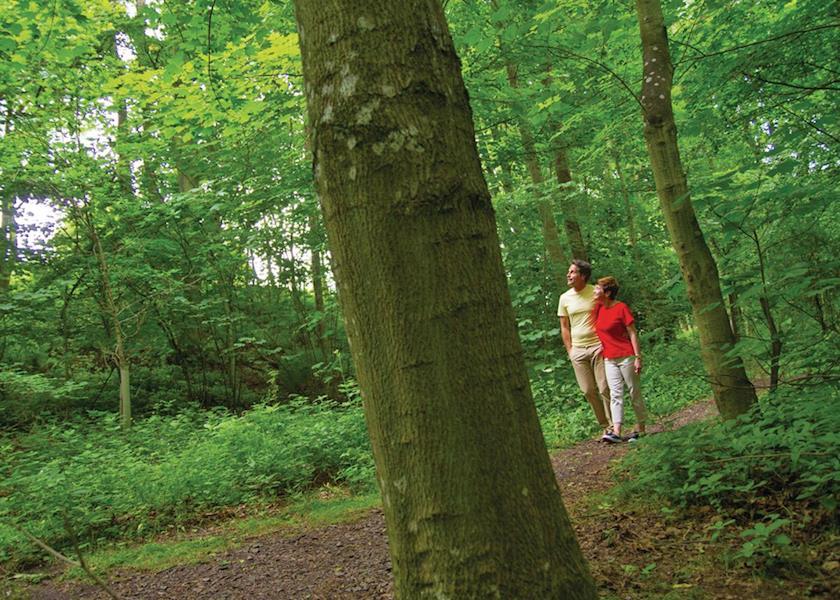Coldingham-Bay-Leisure-Park