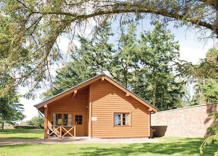 St-Andrews-Forest-Lodges
