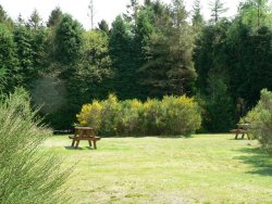 Glentrool Holiday Park, Newton Stewart,Dumfries and Galloway,Scotland
